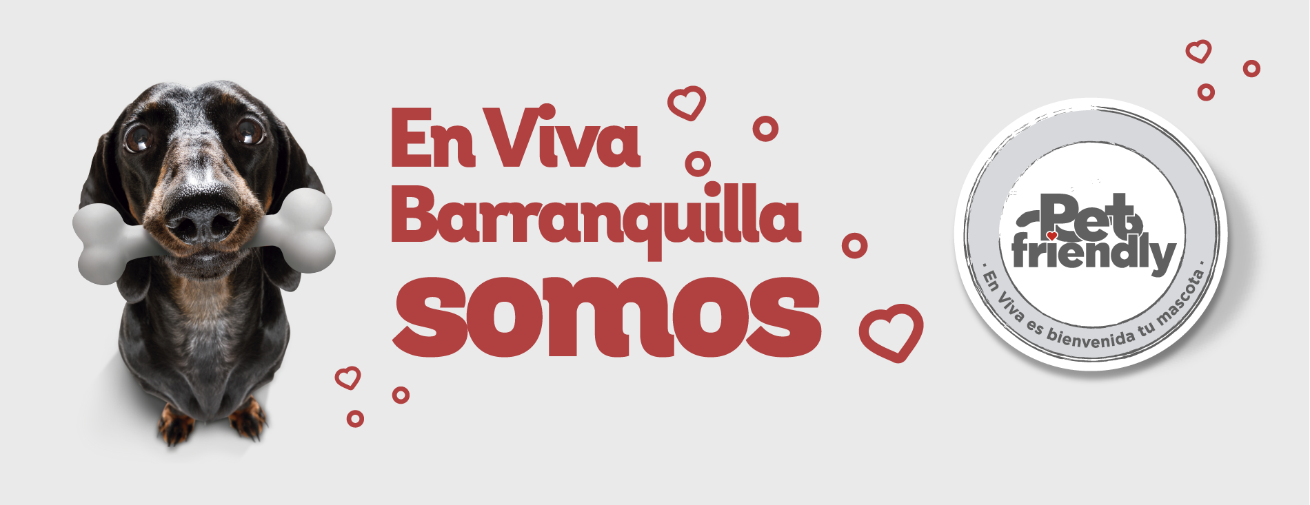 Pet friendly - Barranquilla