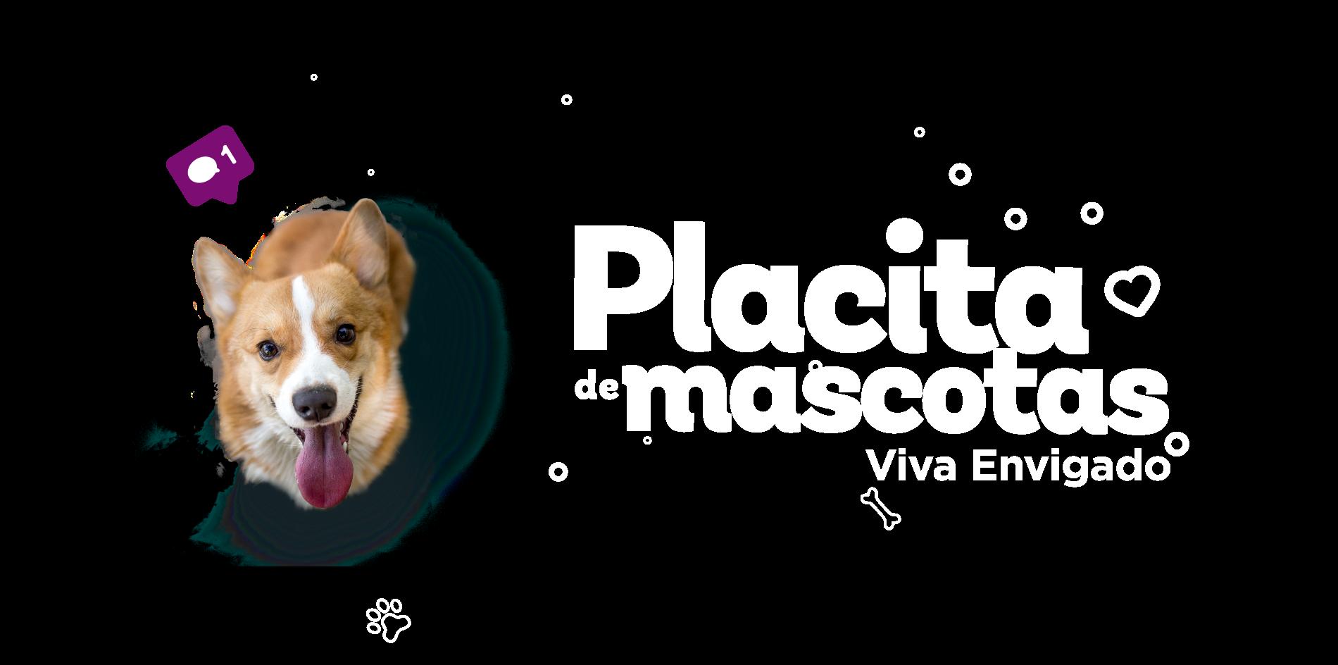 Placita de mascotas - Envigado