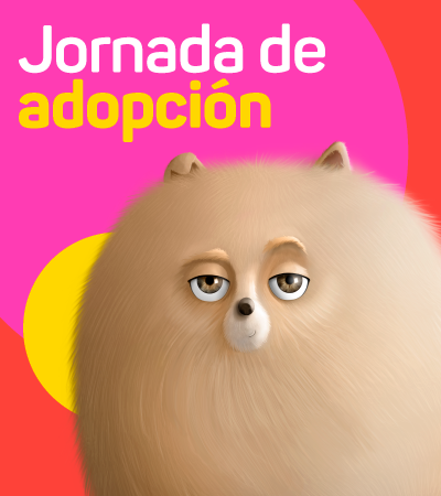 Jornada de adopción - Barranquilla