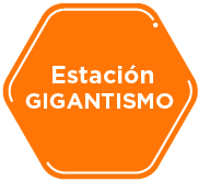 Estación gigantismo