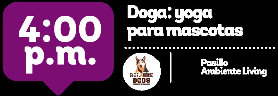 Doga para mascotas - Placita de mascotas