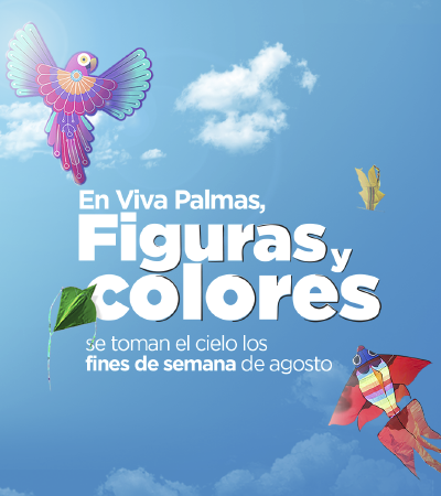 Prismavera voló a Viva Palmas - Palmas