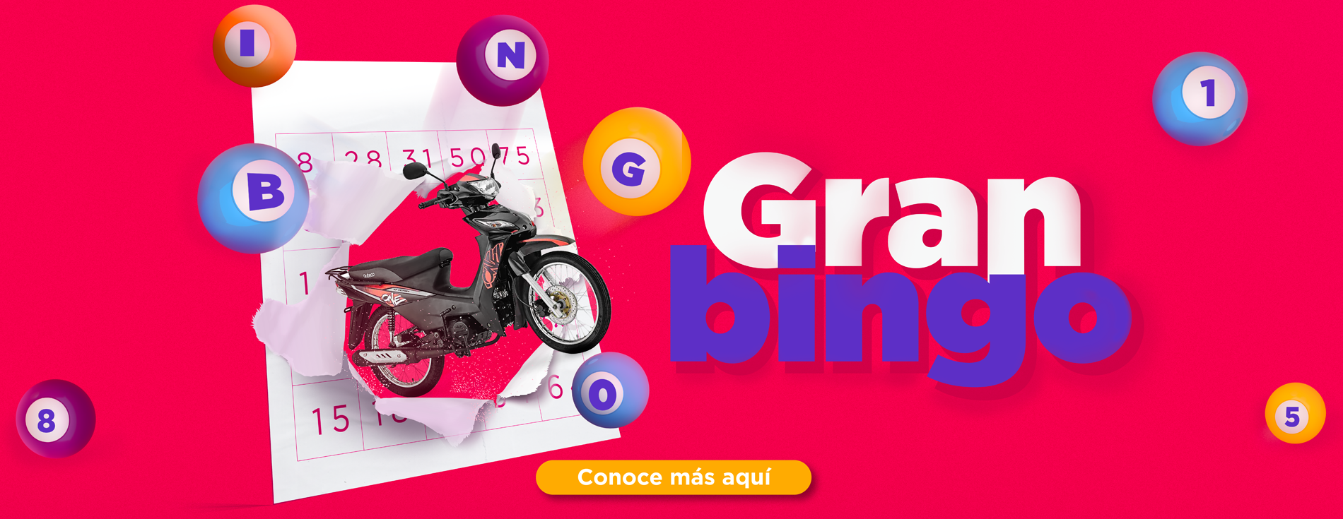 Gran Bingo - Wajiira