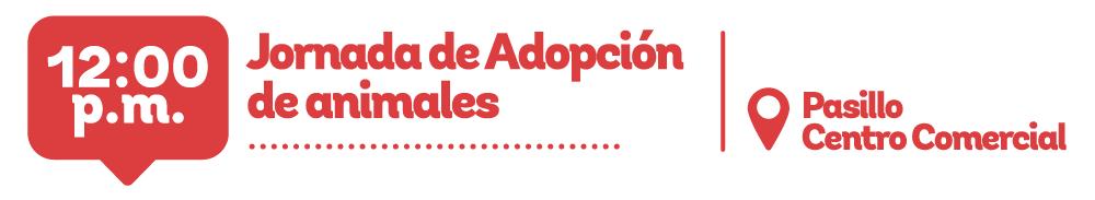 Jornada de adopción de animales en Viva La ceja