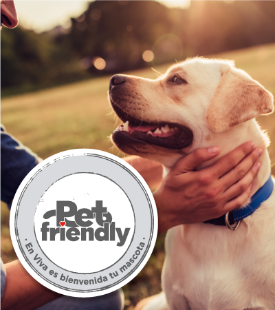 Pet friendly - Villavicencio