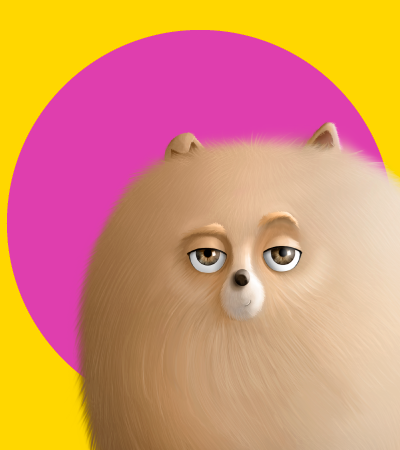 Pets para colorear - La ceja