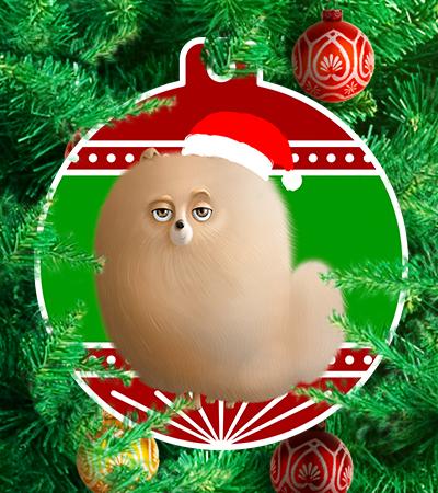 Pets navideños - Caucasia