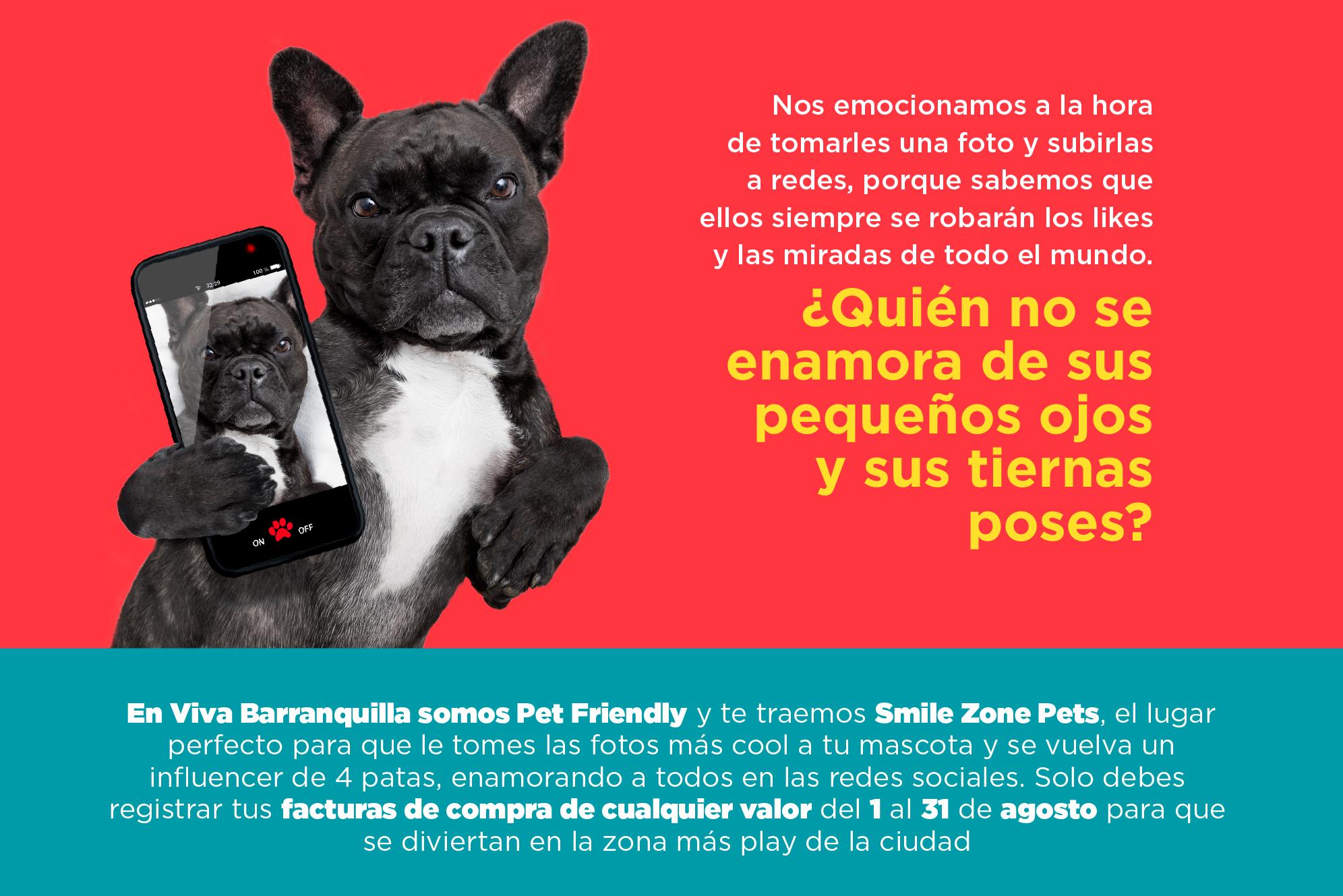 Smilezone Pet