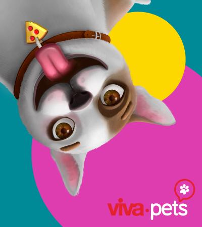 ¡Tu mascota es la protagonista! - Villavicencio